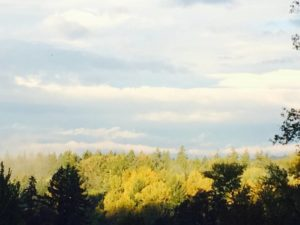 Caregiver Help Photo of the Willamette Valley