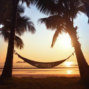 hammock silhouette
